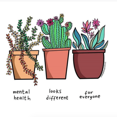 Instagram account to follow for uplifting quotes and visuals, positive vibes, and cute plants