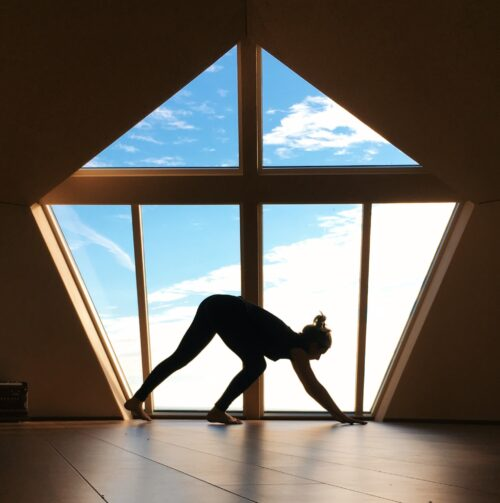 Functional movement with crawling patterns for a sustainable movement practice
