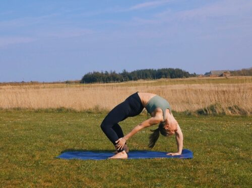 Wheel pose variation with bound ankle