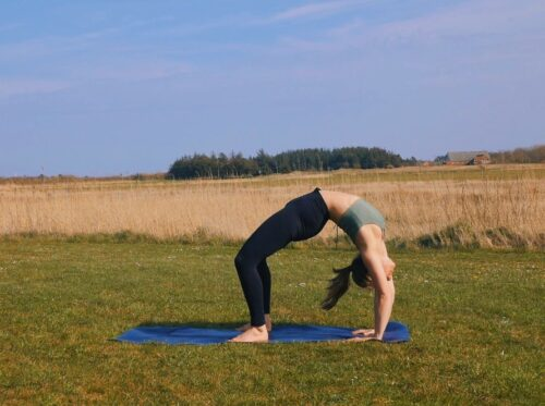 How to do the yoga transition from wheel to forearm wheel pose